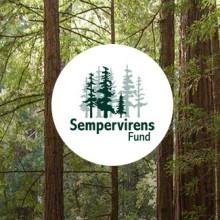 Portfolio Item - Sempervirens Fund