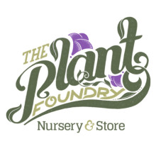 Portfolio Item - Plant Foundry