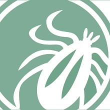 Portfolio Item - Lyme Disease.org