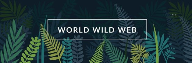 a graphic of jungle brush with the words World Wild Web over the top of it