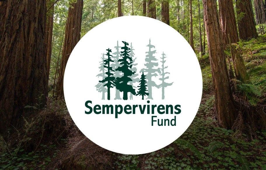 Sempervirens Fund portfolio thumbnail