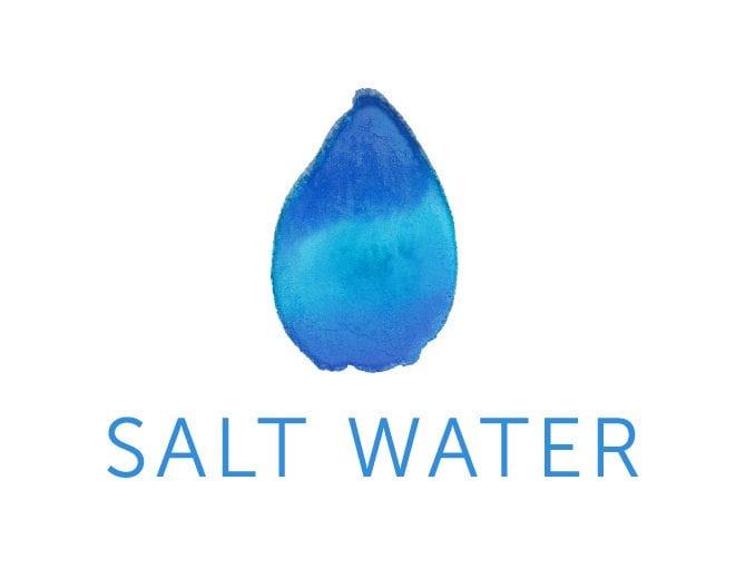 Salt Water logo no tag line