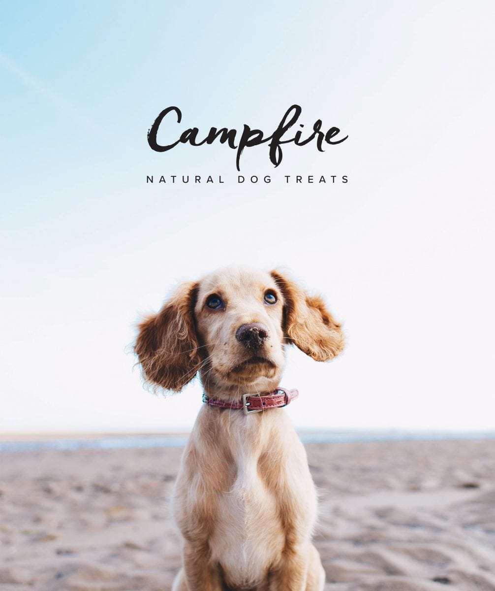 Campfire Natural Dog treats image of dog on beach
