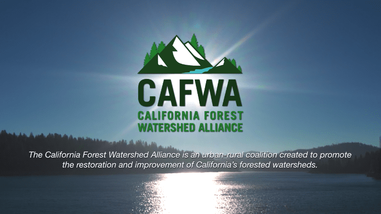 California Forest Watershed Alliance portfolio thumbnail