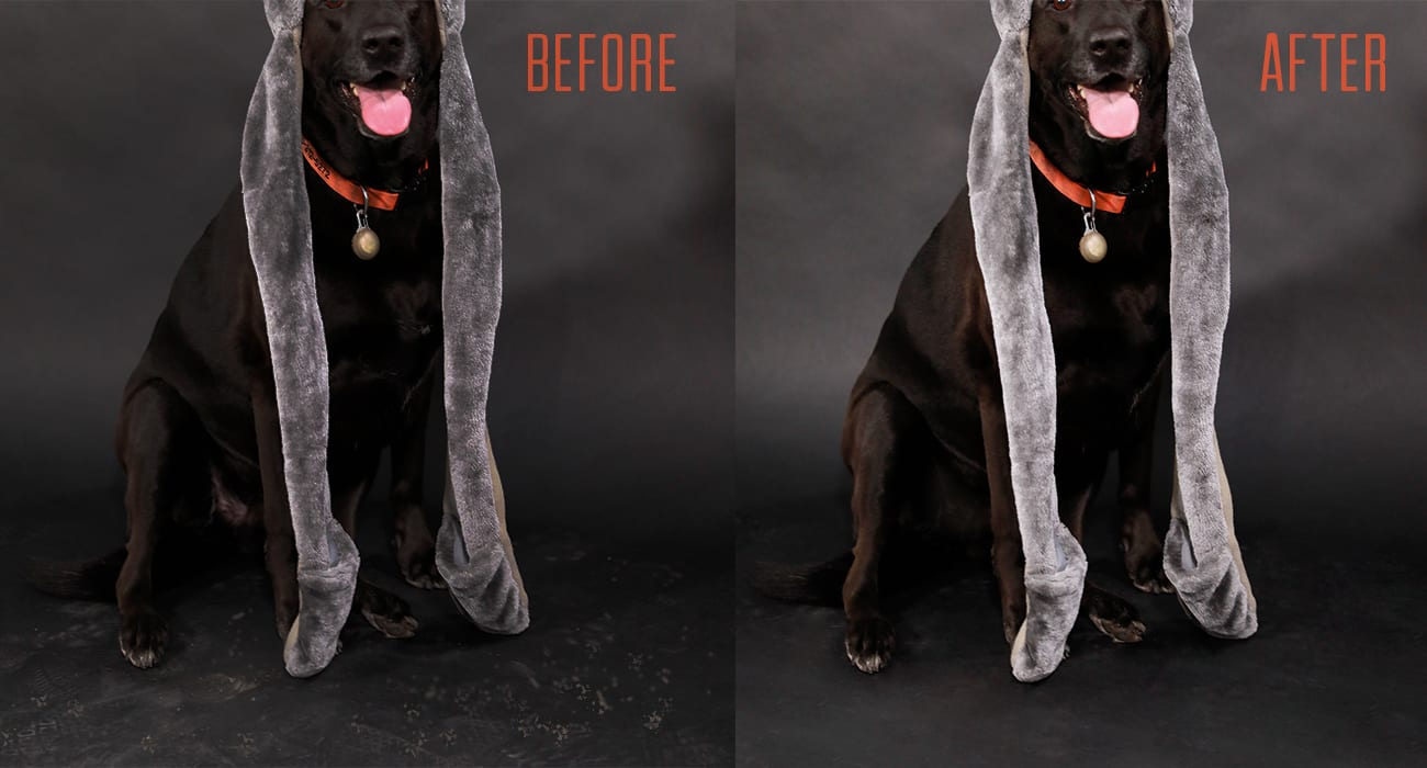Photo Editing Of Before And After Example Of Editing Eyes And Teeth With Black Dog Wearing A Animal Hat