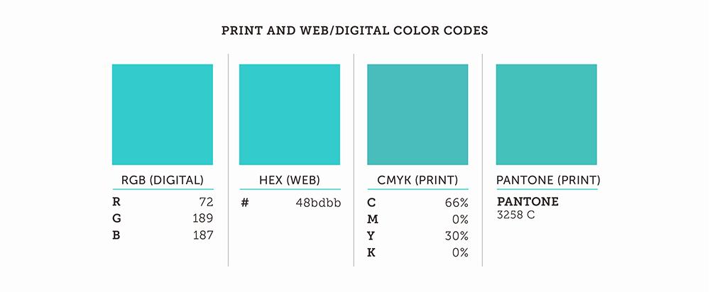 Print And Web/Digital Color Codes RGB HEX CMYK Pantone Color Palette