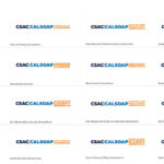 CSAC Logo Suite With Sixteen Variants Of The CSAC Logo On White Background